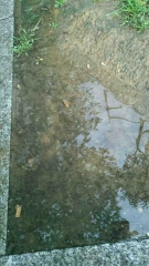 pluie,regard,photographies,m.c.san juan